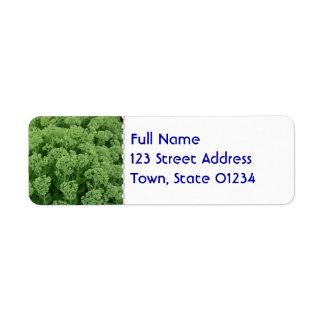 Seedum Return Address Label