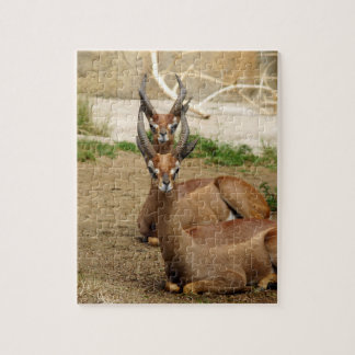 Seeing double jigsaw puzzle