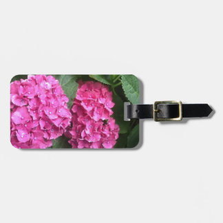 Seeing Double Luggage Tag
