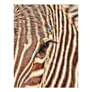 Seeing stripes? flyer