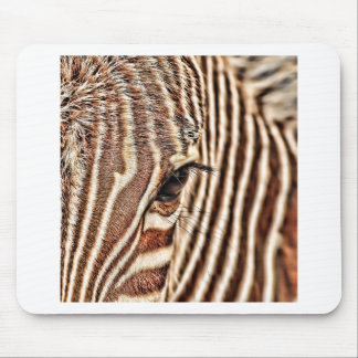 Seeing stripes? mouse pad