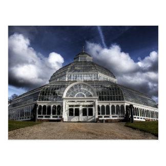 Sefton Park Palm house Liverpool, England Postcard