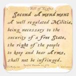 Segunda enmienda colcomania cuadrada