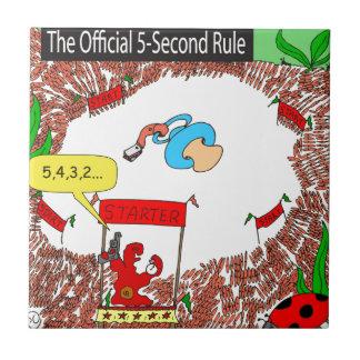segundo dibujo animado de la regla 507 5 tejas  ceramicas