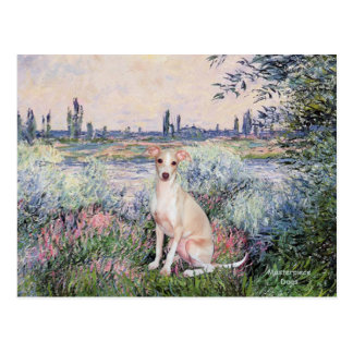 Seine - Italian Greyhound 5 Postcard
