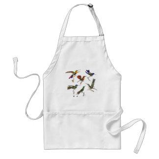 Seis colibríes coloridos delantal