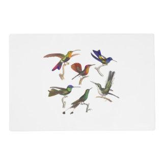 Seis colibríes hermosos tapete individual