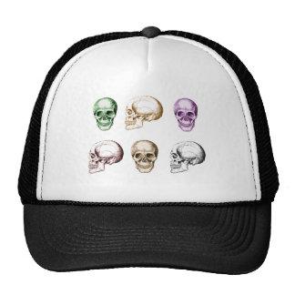 Seis cráneos humanos multicolores gorros