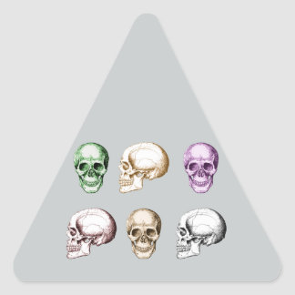Seis cráneos humanos multicolores pegatina triangular