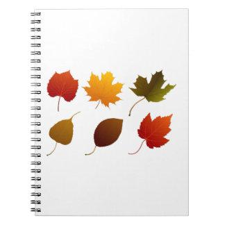 seis imágenes graphic.png de la naturaleza de las  notebook