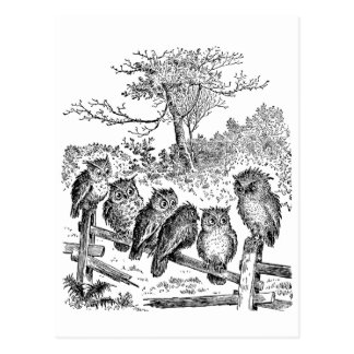 Seis pequeños búhos que se sientan en una cerca tarjetas postales