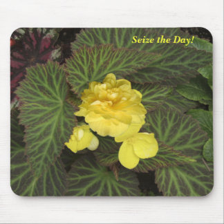 Seize the Day Begonia Mousepad