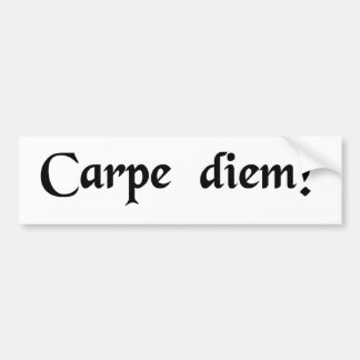 Seize the day. bumper sticker