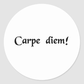 Seize the day. round stickers