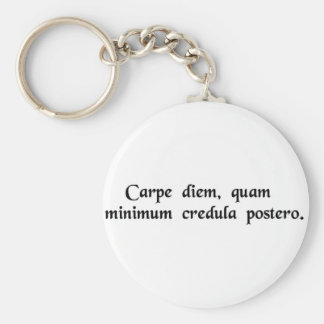 Seize the day, trust as little as possible...... basic round button keychain