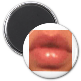 sekusui lip magnets