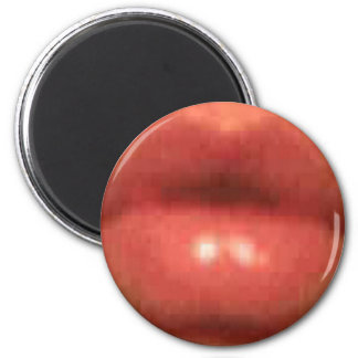 sekusui lip magnet