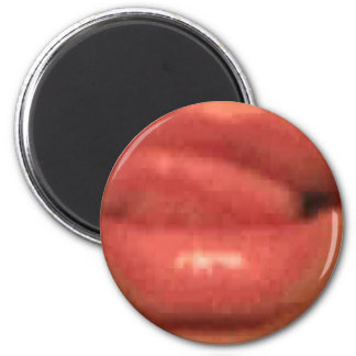 sekusui lip refrigerator magnets