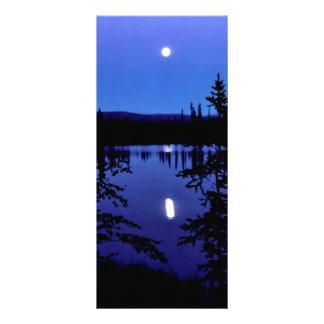 Selawik Moonscape Rack Card