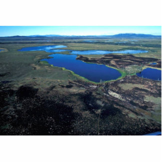 Selawik Refuge Wetlands Burn Area Acrylic Cut Outs