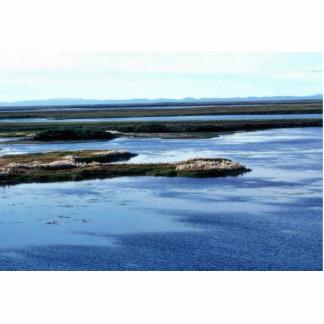 Selawik River Wetlands and Cotton Grass Photo Cutouts