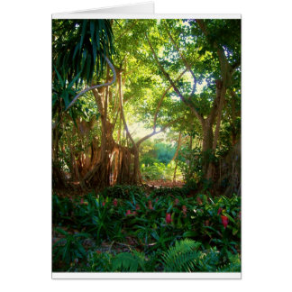 Selby Gardens Card