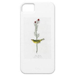 Selby's Flycatcher John Audubon Birds of America iPhone SE/5/5s Case