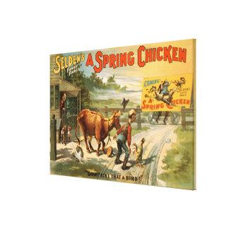 Selden's Funny Farce, A Spring Chicken Play 2 Canvas Print