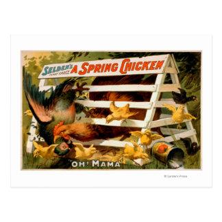 Selden's Funny Farce, A Spring Chicken Play 2 Postcard