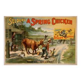 Selden's Funny Farce, A Spring Chicken Play 2 Poster