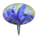 Selección azul de la torta de los iris decoración de tarta