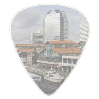Selección de Jacksonville la Florida Púa De Guitarra Delrin Blanco