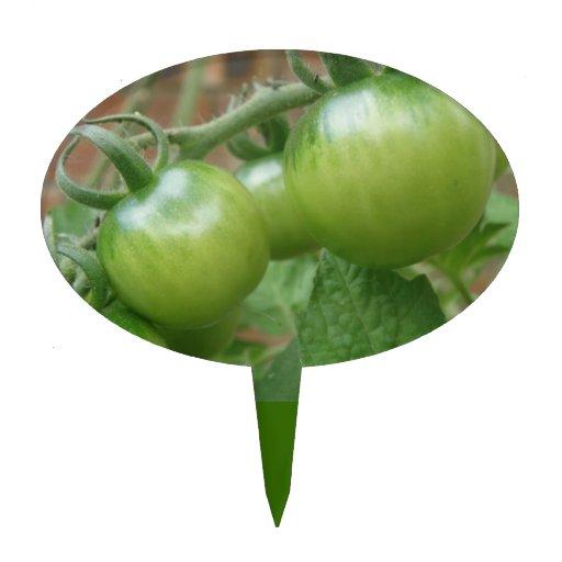 Selección verde de la torta de los tomates figuras para tartas