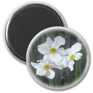 selecciones florales de la mediados de-primavera imán redondo 5 cm