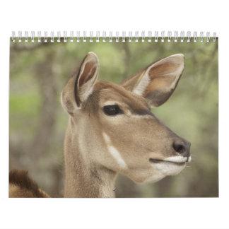 Selected Images Calendar