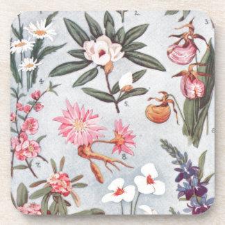 Selected State Flowers Vintage Art Illustration Drink Coaster