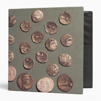 Selection Celtic and Roman  coins found Binder
