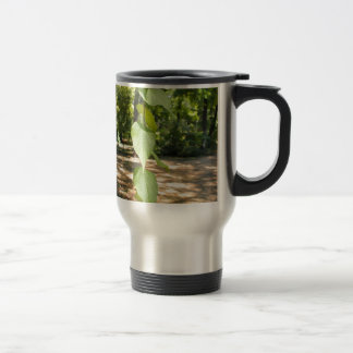 Selective focus on a young branch of a tree with l 15 oz stainless steel travel mug