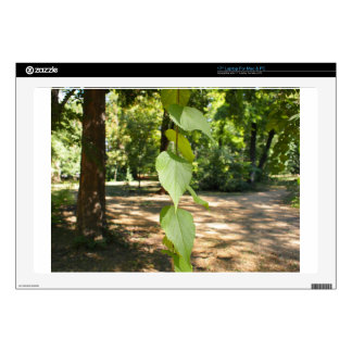 """Selective focus on a young branch of a tree with l 17"""" laptop decal"""