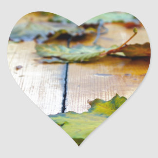 Selective focus on autumn maple leaves with shallo heart sticker