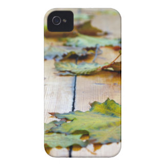 Selective focus on autumn maple leaves with shallo iPhone 4 cover