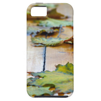 Selective focus on autumn maple leaves with shallo iPhone SE/5/5s case