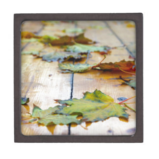 Selective focus on autumn maple leaves with shallo jewelry box