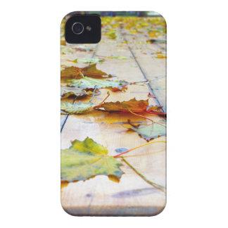 Selective focus on fallen autumn maple leaves clos Case-Mate iPhone 4 case