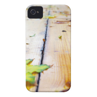 Selective focus on fallen autumn maple leaves clos iPhone 4 Case-Mate case