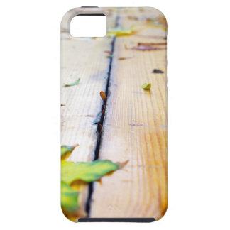 Selective focus on fallen autumn maple leaves clos iPhone SE/5/5s case