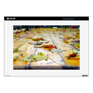 Selective focus on fallen autumn maple leaves clos skin for laptop