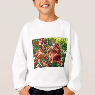 Selective focus on maple branch with dried leaves sweatshirt