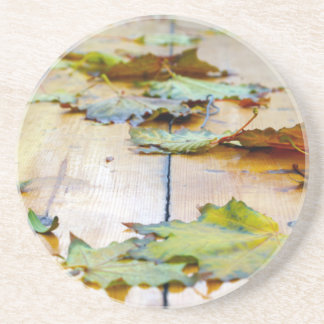 Selective focus on the autumn fallen maple leaves drink coaster