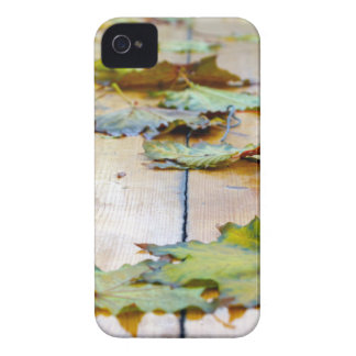 Selective focus on the autumn fallen maple leaves iPhone 4 case